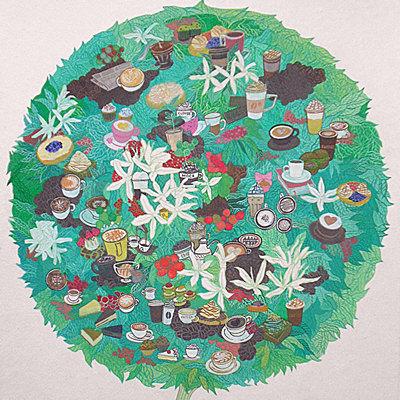 [A0020-0029] coffeetree