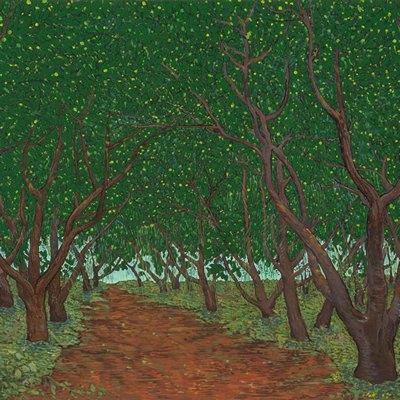 [A0027-0052] 탱자나무 숲