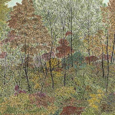[A0027-0076] 가을 숲