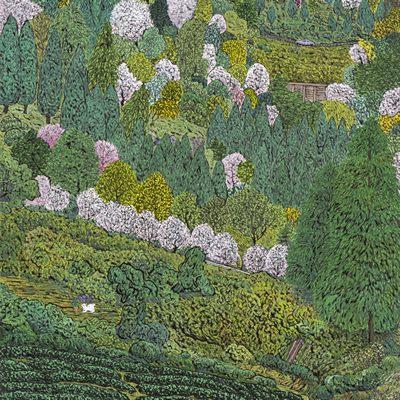 [A0027-0077] 보성 다채밭 2