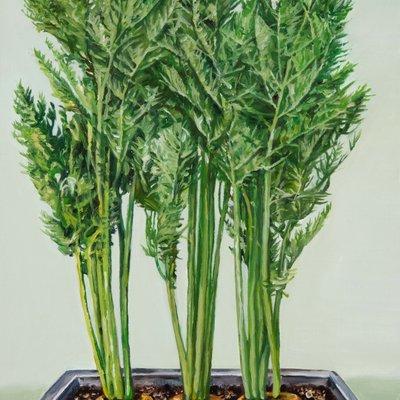 [A0030-0037] Green Tray III - Carrot