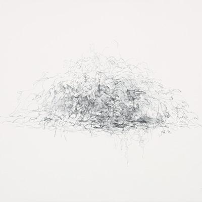 [A0034-0012] 수풀 (Foliage)