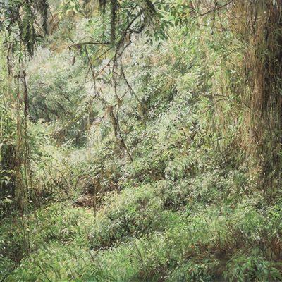 [A0034-0020] 숲_2018_02