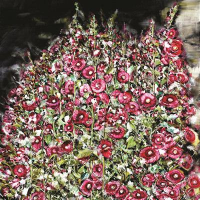 [A0037-0020] 접시꽃 Hollyhock