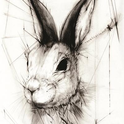 [A0037-0024] 귀 먹은 토끼 Deaf Rabbit