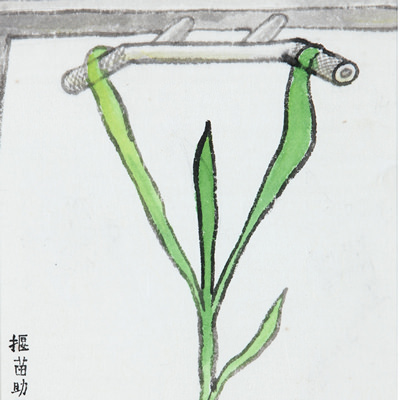 [A0044-0001] Pulling on Plant_알묘조장(?苗助長)
