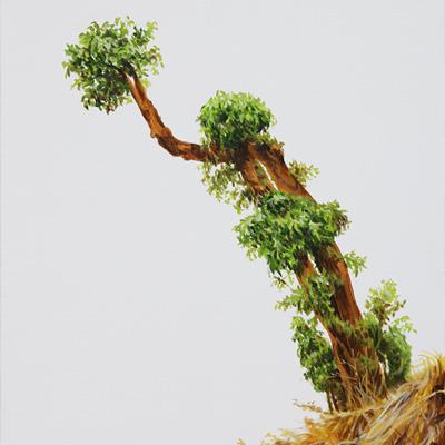 [A0044-0004] Hammering Tree