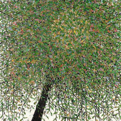 [A0051-0039] 변형된 욕망 - 버드나무 2