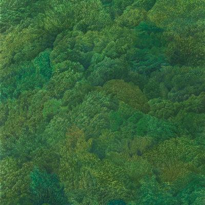 [A0065-0002] 숲