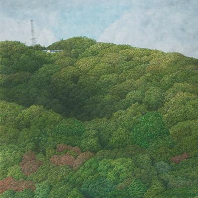 [A0065-0003] 숲