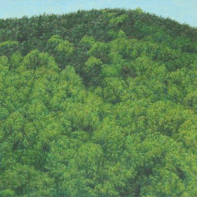 [A0065-0015] 산