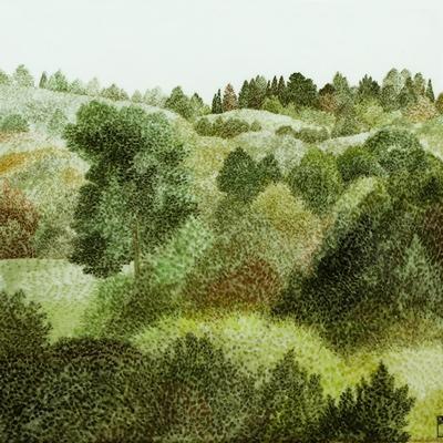 [A0074-0047] Landscape