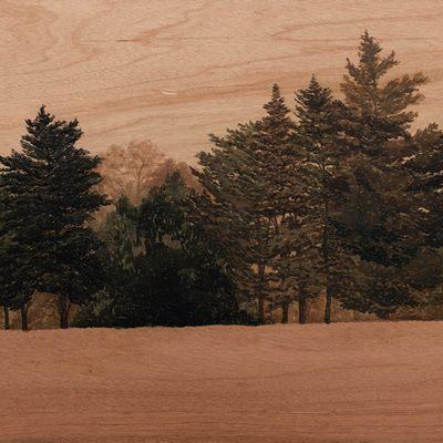 [A0074-0057] Landscape