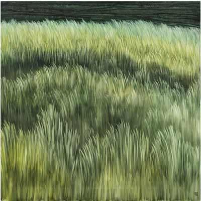 [A0074-0063] Landscape