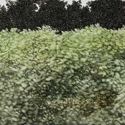 [A0074-0064] Landscape