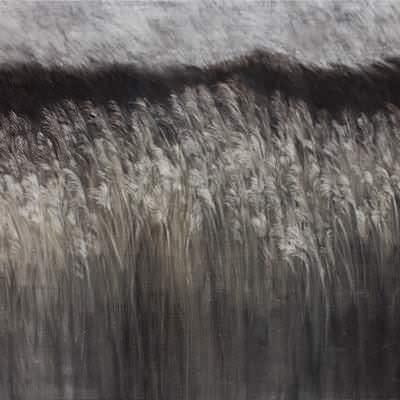 [A0074-0066] Landscape