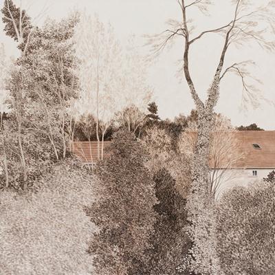 [A0074-0076] Landscape