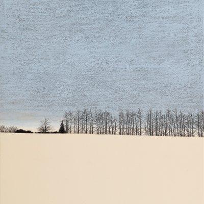 [A0074-0097] Landscape