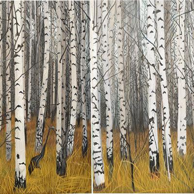 [A0080-0002] 은 자작나무 숲