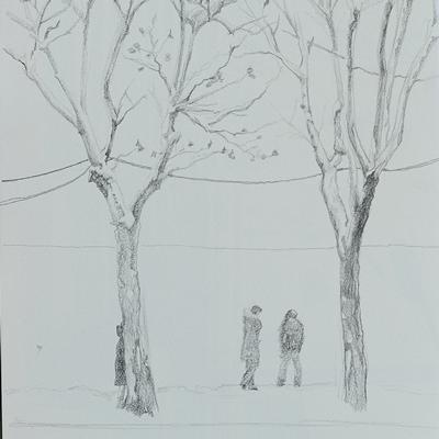 [A0080-0018] 두개의 나무