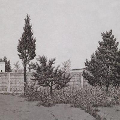 [A0086-0033] 사라진 나무