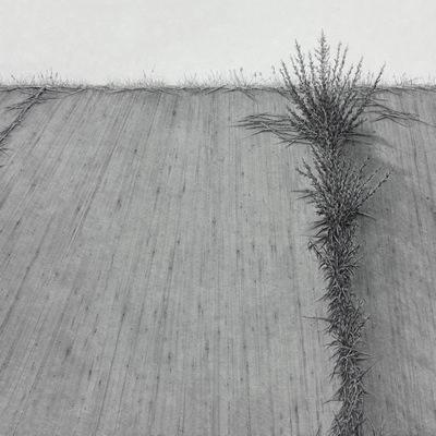 [A0086-0039] 어떤 길