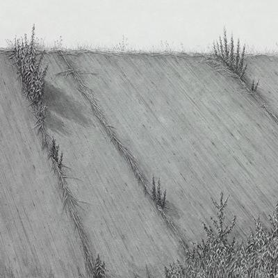 [A0086-0040] 어떤 길