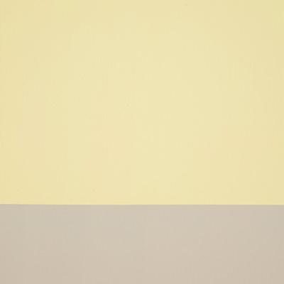 [A0107-0027] Yellow Line-VI