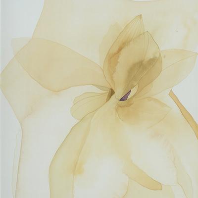 [A0111-0015] 별에 비친 꽃 1