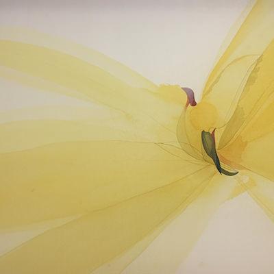 [A0111-0022] 날개짓 2