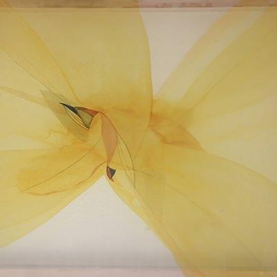 [A0111-0023] 날개짓