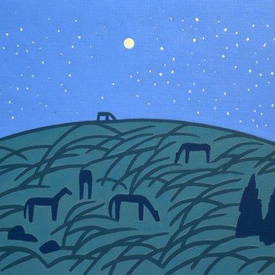 [A0112-0044] 채집풍경-밤 오름