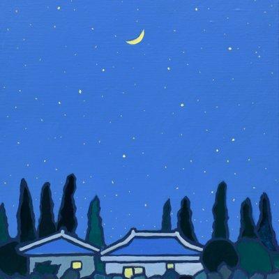 [A0112-0047] 채집풍경-가시리의 밤