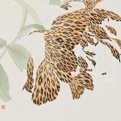 [A0116-0007] Leopard Flower1