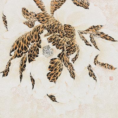 [A0116-0010] Leopard Flower4