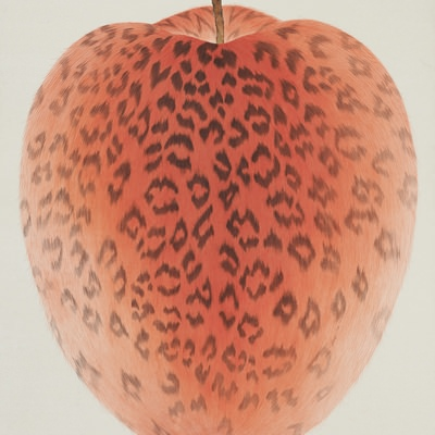 [A0116-0023] Leopard Apple-Red