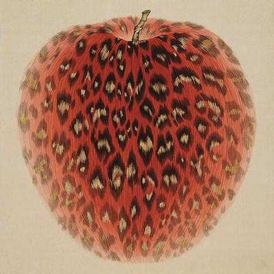 [A0116-0062] Leopard Apple-passion