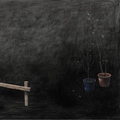 [A0140-0017] 화분들 Flower Pots