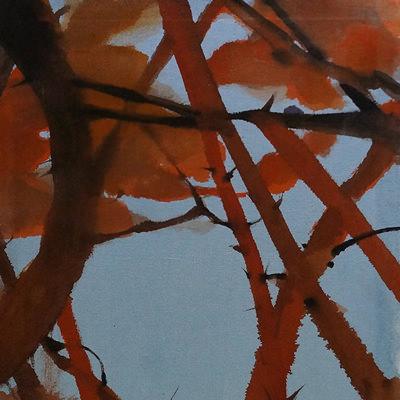 [A0141-0016] 우거진 소나무