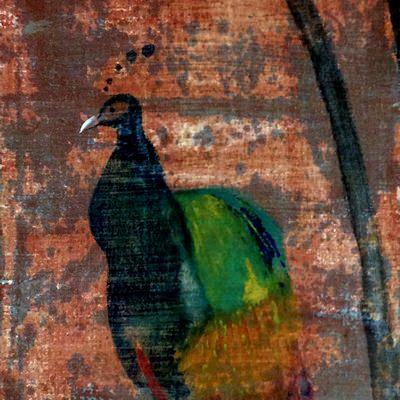 [A0141-0039] 공작새