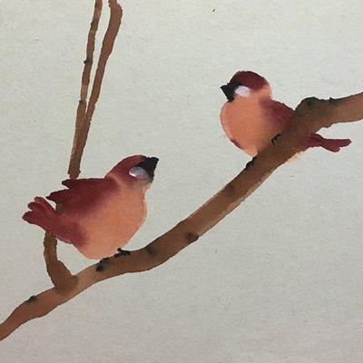[A0141-0048] 참새의 구애