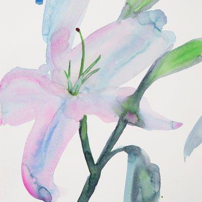 [A0141-0115] lily