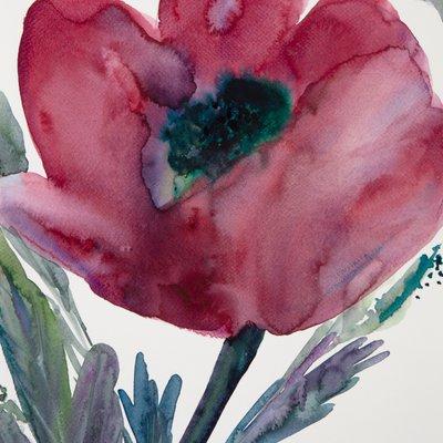 [A0141-0118] Anemone
