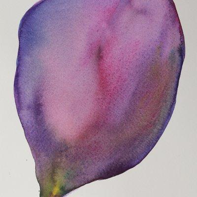 [A0141-0119] A petal-01