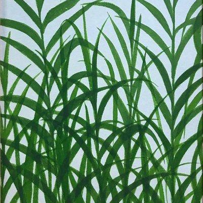 [A0141-0132] grass