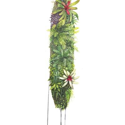 [A0147-0026] 식물1