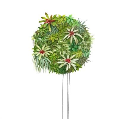 [A0147-0027] 식물3