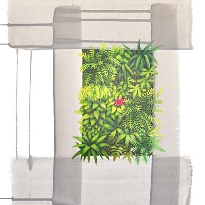 [A0147-0029] 식물6