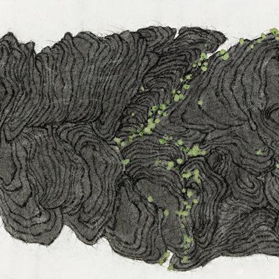 [A0159-0001] 이끼핀 돌