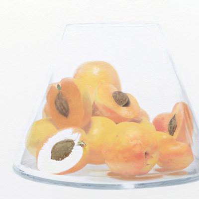 [A0163-0028] Apricots